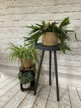 plantantafel